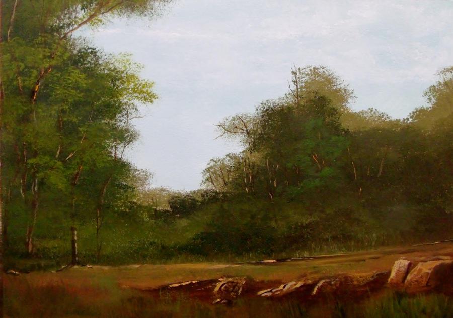 Rocky Path by Natan-Estivallet