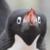 Adelie Penguin Shout Icon