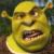 Shrek Ugly Icon