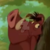 The Lion King - Sneaky Pumbaa Icon