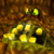 Conker's Bad Fur Day - The Great Mighty Poo Icon