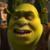 Shrek the Third - Shrek Icon