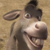 Shrek - Smile Donkey Icon