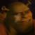 Shrek Forever After - Brogan Icon