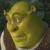 Shrek - Bored Shrek Icon