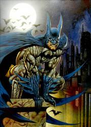Gotham belongs to me by LOGANNINEFINGERS