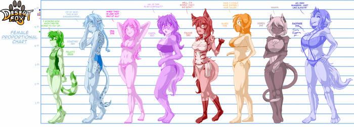 Desert Fox Bust Chart