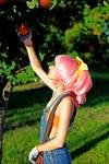 Code Geass - Anya Alstreim oranges cosplay