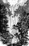 Tarzan jungle in ink