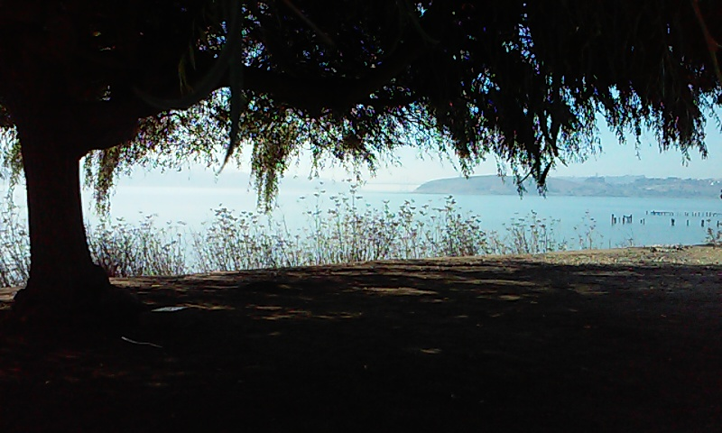 Under the willow tree by nnf247
