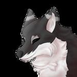 Black Foxo