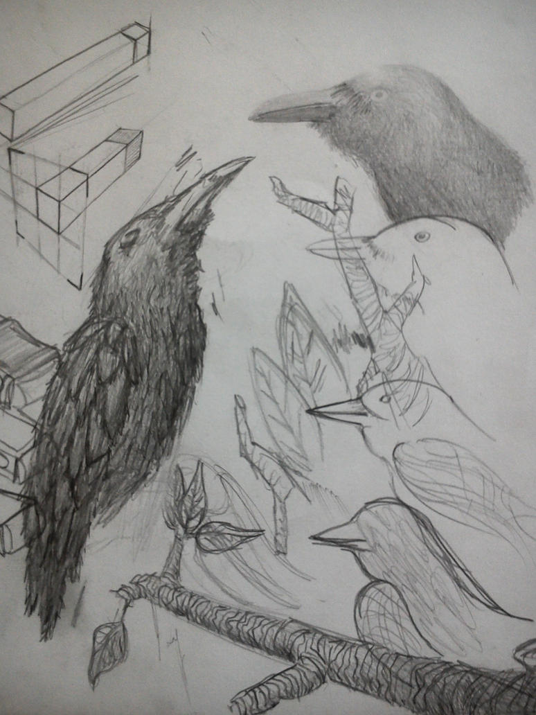 Crows by Deslandes-BR