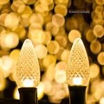 Life of Christmas Bulbs IV