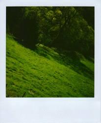 polaII by hircine