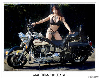 American Heritage by Curvz
