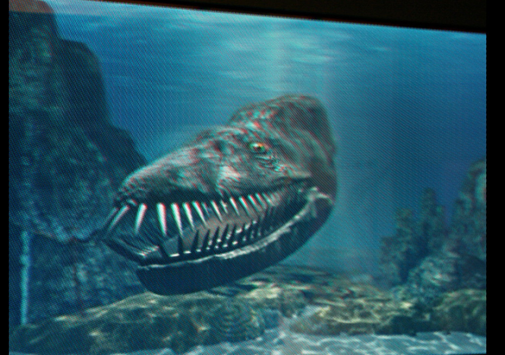 Basilosaurus Vs Megalodon No comments have been added Whale Shark Size