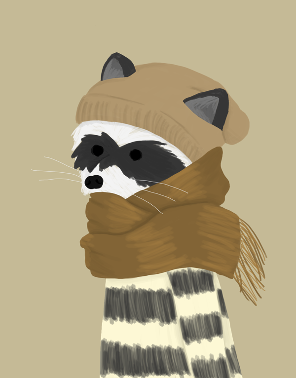 Winter Raccoon by whosname