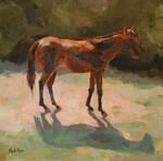 Horse by seneschal
