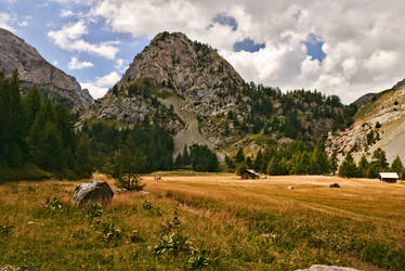 Flower meadow Alps by Recreate4Life