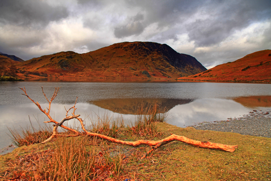 Branch Left At Crummock Water by Capturing-the-Light