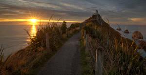 Sunrise Nugget Point Lighthouse