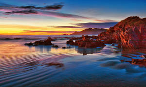 Morning Glow Hays Gap to Nugget Point Otago