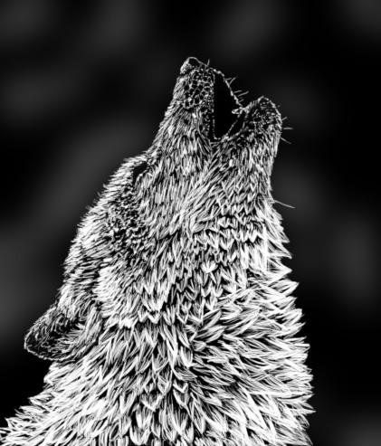 ...:::Howling Wolf:::... by InokoYamaniko