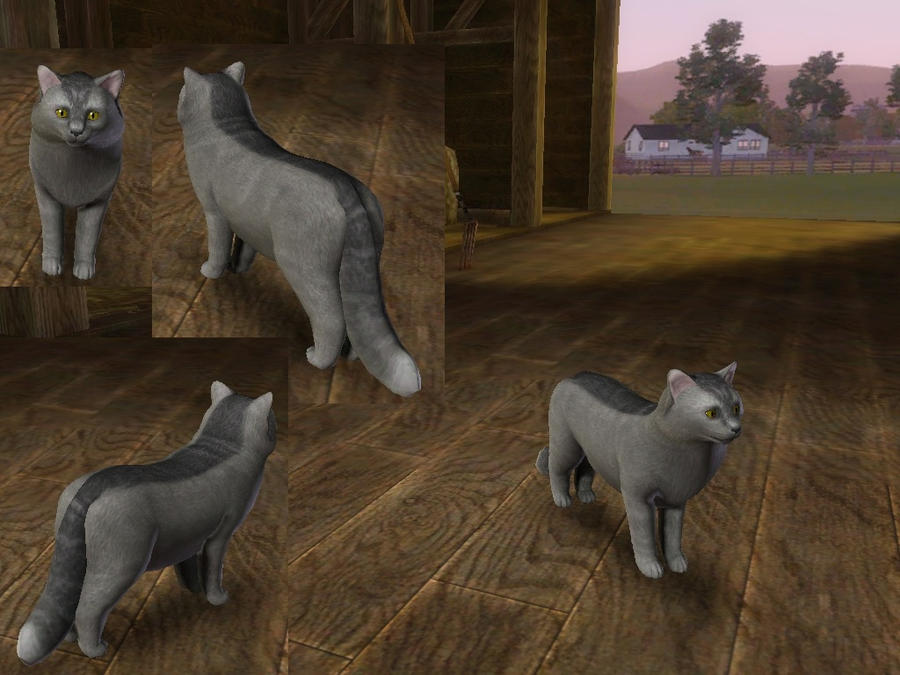how to change fur on cat sims 3