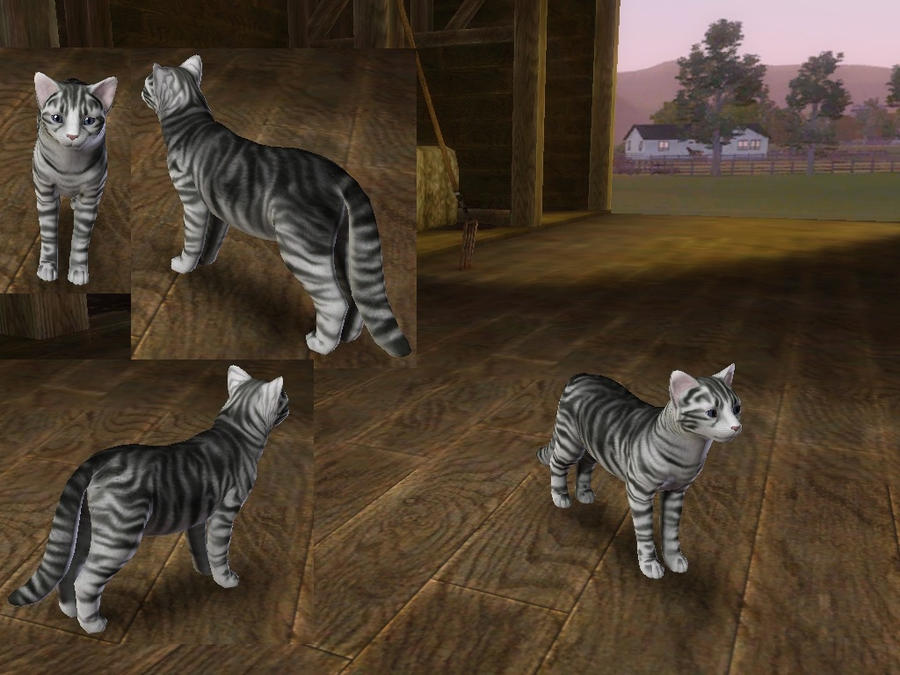 Site Reddit Com Sims  Cats And Dogs