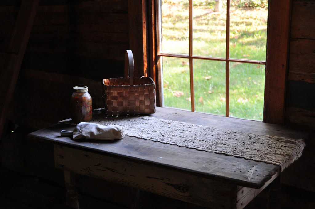 Still Life in a Log Cabin by NorthOne