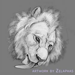 Lion studies 4