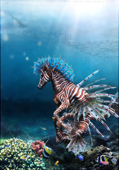 Hippocampus Pterois