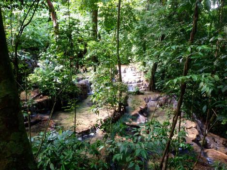 The Rivers of Tikal