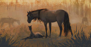 Silv with foal