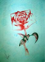 Rose by fabiofreitas