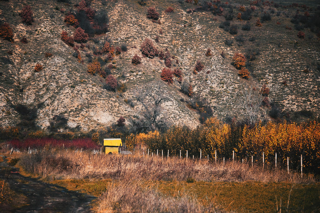 Little yellow house by Bomb-Creator