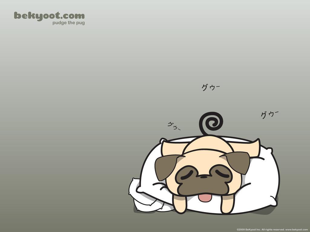 Pugs Wallpaper Background Best Hd Wallpaper