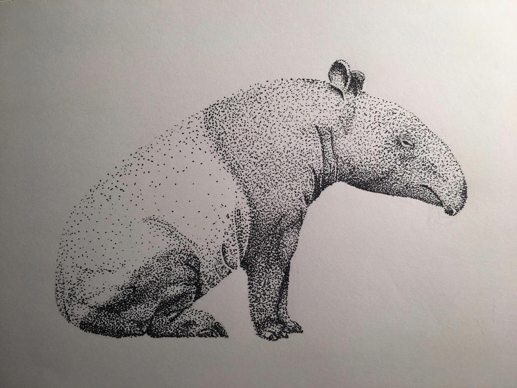 Tapir Pointillism by MintMaker