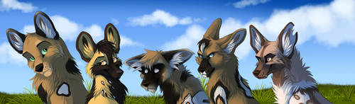 Wild dogs by hecatehell