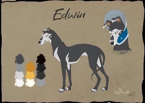 Character sheet Edwin