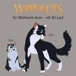 Warrior cats 1-1 - out of clans