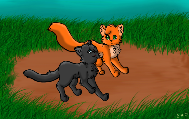 Cinderpaw and Fireheart by SpotedshadowFireheart And Cinderpaw