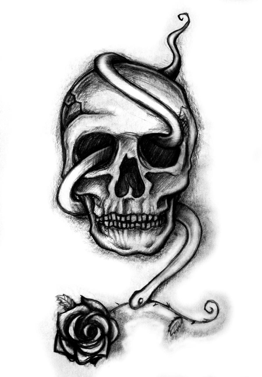 skull sketch by kupo nut89 on deviantart
