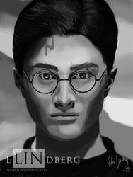 Harry Potter by Quilde
