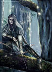 Elf of Lorien