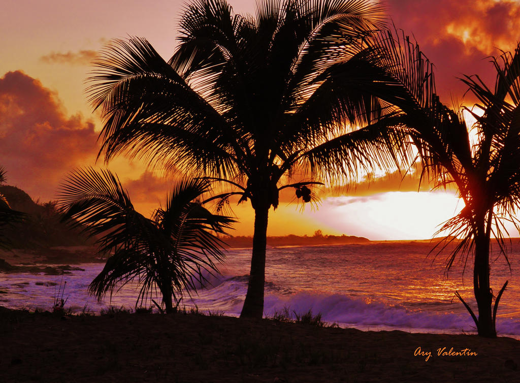 Paradise VI by LoliCanoli