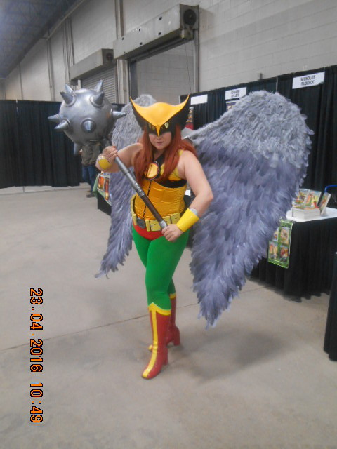 Hawkgirl by altrondragon