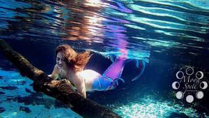 The Wanderlust Mermaid