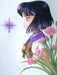 Sailor Saturn and the Carnations