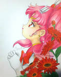 Sailor Chibi Moon and Gerberas